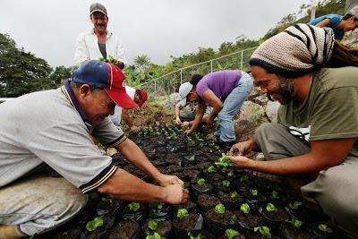 """Commune Agro-écologique """"EL Tambor"""", Municipalité Andrés Bello. État de Mérida, Venezuela, 2013."""
