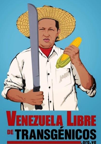 """""""Vénézuéla libre d'OGMs"""". L'affiche rappelle que Hugo Chavez a interdit, dès 2003, l'introduction d'OGM au Venezuela."""