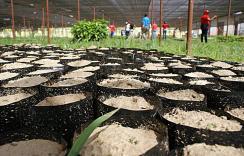 Vivier communal agro-écologique