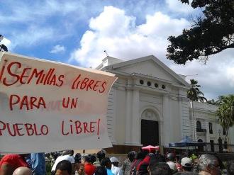 SEMILLAS LIBRES PUEBLOS LIBRES